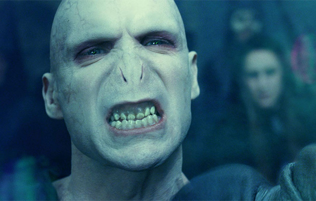 Voldemort is Wayne LaPierre's mother